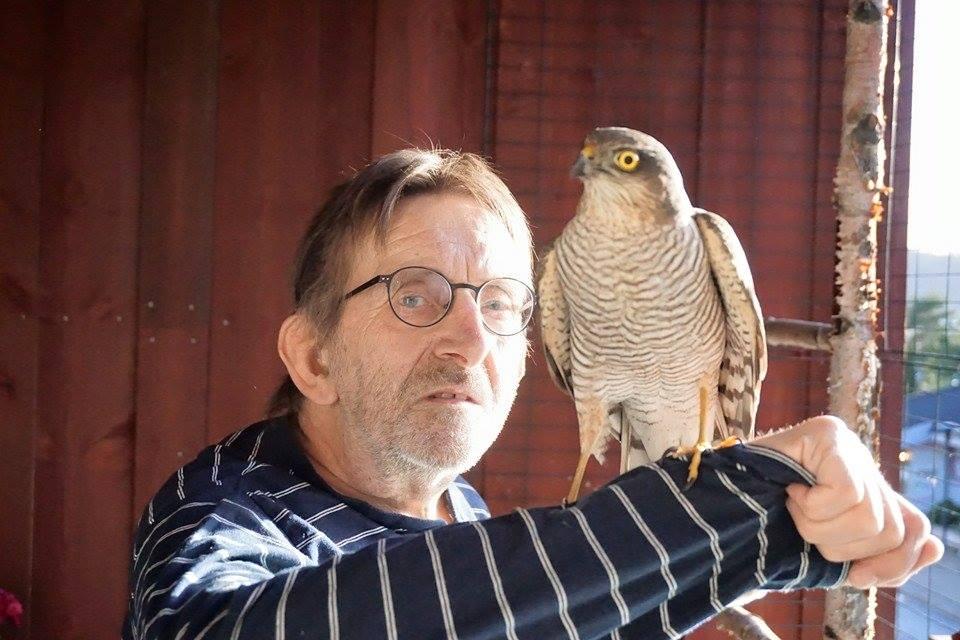 DAMETEKKE: – Dette viser jo at en 64-åring fremdeles kan ha draget på damene, ler Kjell Skråvik etter det helt spesielle møtet med en spurvehaukhunn.